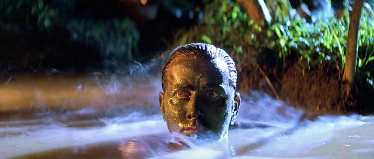 """Willard """"sort la tête de l'eau"""""""