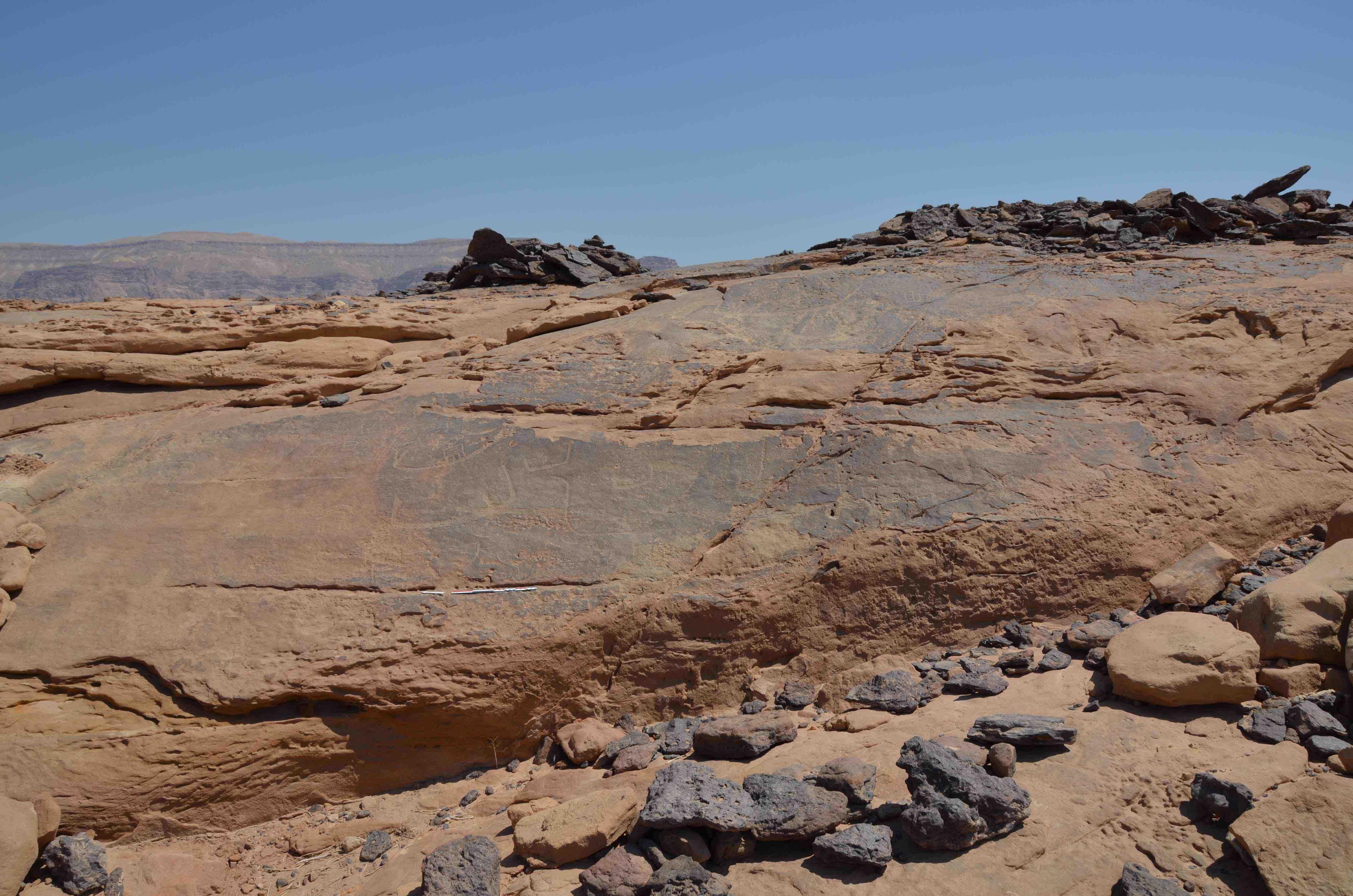 fig. Sinai 3-léger