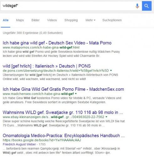 google_wildsgefert