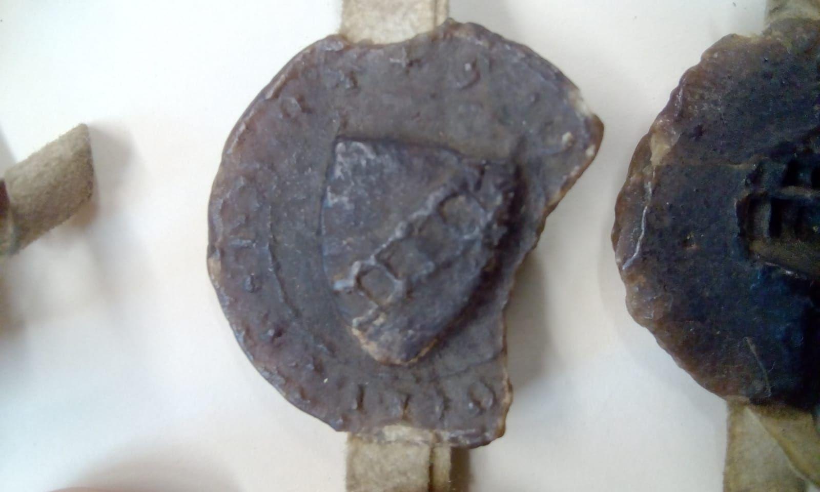 Fossil datiert Wikipedia