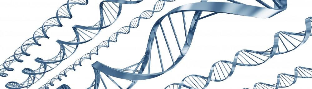 FiTeGe : Fichiers et Témoins Génétiques