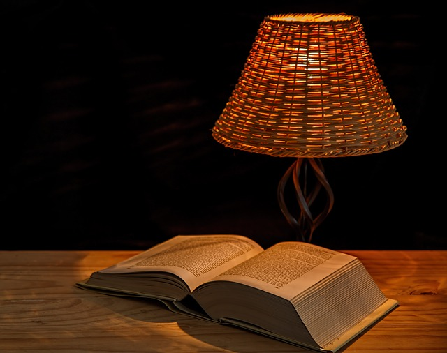 clara l 233 vy 171 comment le livre de chevet vient au lecteur 187 les r 233 seaux du livre