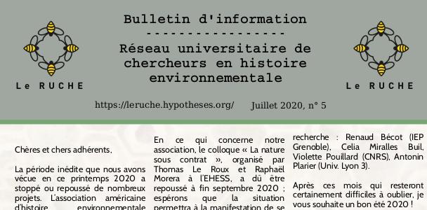 Bulletin du ruche n°5 juillet 2020