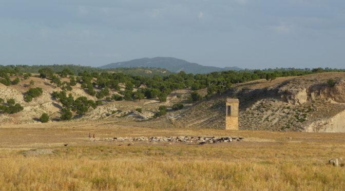 Kairouan VII. Villes et archéologie urbaine au Maghreb et en Méditerranée