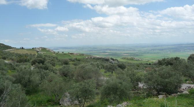 La lex Hadriana de rudibus agris et les domaines impériaux de la vallée du Bagradas (Africa proconsularis)