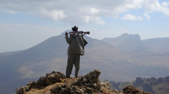 Règles du jeu en « situations autoritaires ». Réflexions depuis une approche comparée Cameroun-Éthiopie