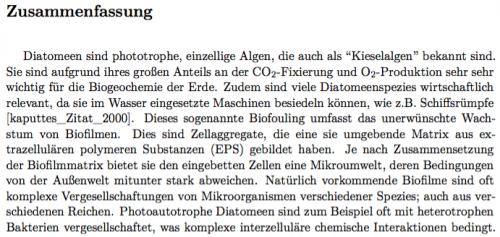 PDFs-gegenlesen