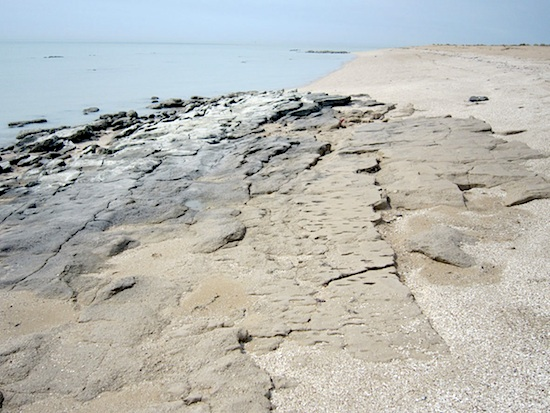 Front de mer, zone est d'extraction de la pierre © MAFKF.