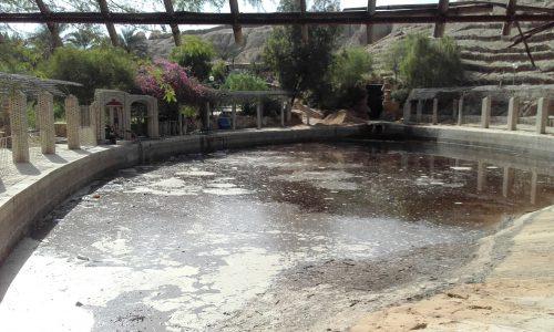 bassin-corbeille-de-nefta