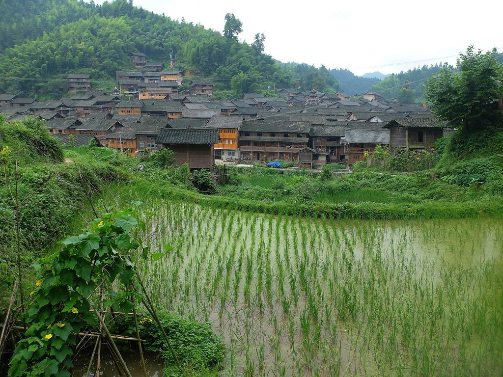 Paysage, culture et maraîchage Dimen (Guizhou)