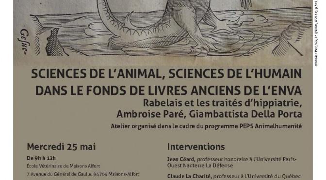 Vidéos de l'atelier « Sciences de l'animal, sciences de l'humain dans le fonds de livres anciens de l'ENVA »