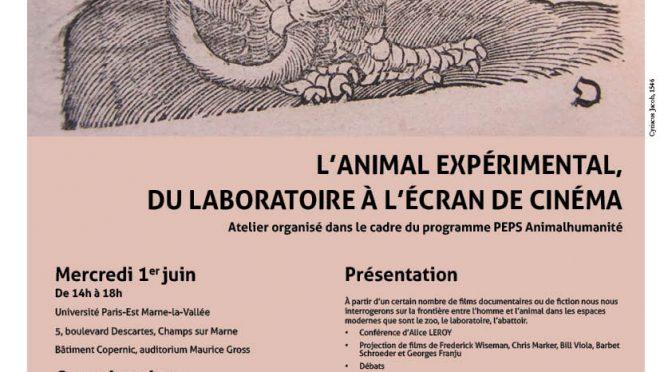 Vidéo de l'atelier «L'animal expérimental, du laboratoire à l'écran du cinéma»