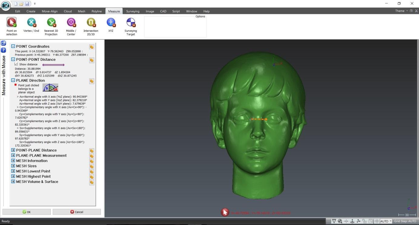 3D Reshaper - Mesures (Photo CIPA)