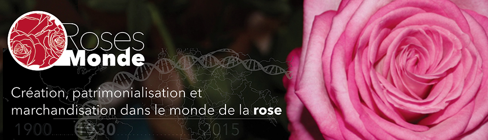RosesMonde