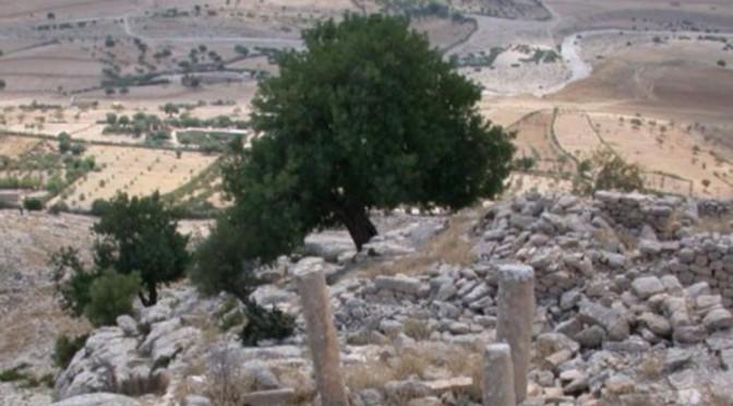 Actualités : colloque «Campagnes et archéologie rurale au Maghreb et en Méditerranée»
