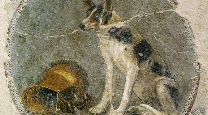 """Actualités : """"Les Nocturnes du Plan de Rome : Des palais des Ptolémées aux maisons de l'élite : les mosaïques d'Alexandrie"""""""