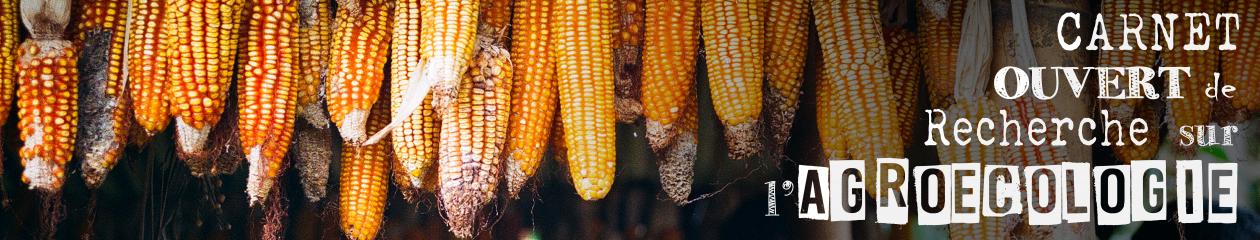 CORA | Carnet Ouvert de Recherche sur l'Agroécologie