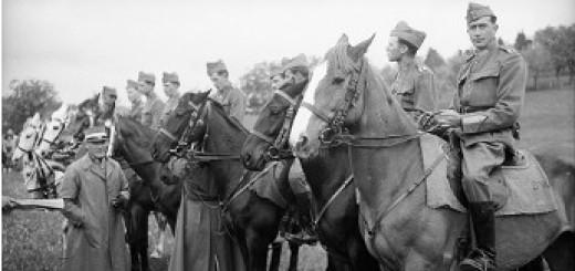 Gustave Roud, Dragons sur leurs chevaux, face au public, recevant des prix, 1940-1941, Fonds photographique Gustave Roud, BCU-Lausanne