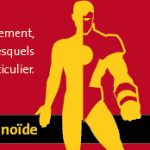 banniere_blog.jpg