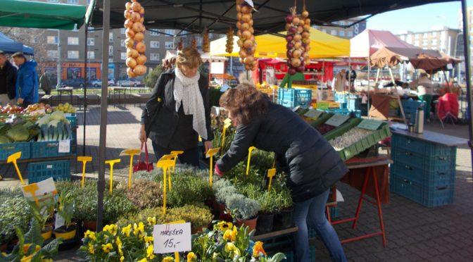 L'artisanat et le commerce alimentaire de détail en République tchèque