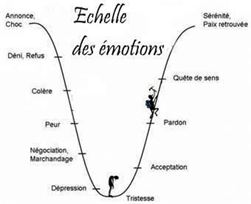echelle-des-emotions