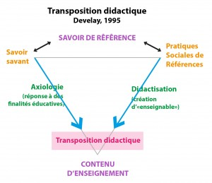 Fig 2 - Transpo didactique Develay