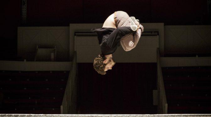"""Appel à contribution """"Cirque et approches comparées. Professionnalisations en question : enjeux, identité, processus"""""""