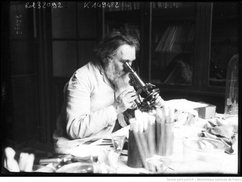 Professeur Metchnikoff [le scientifique travaillant au microscope]