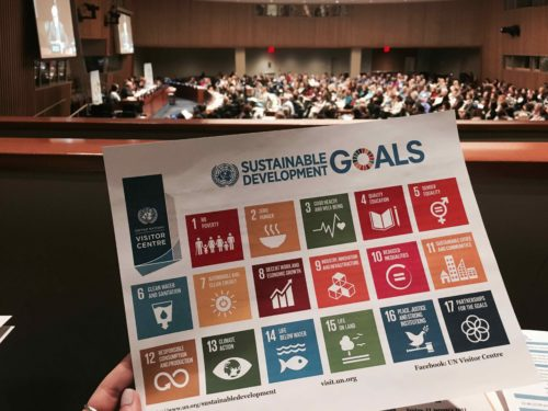 A chart showing the United Nations Development Goals