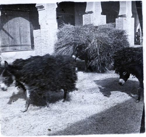 Maroc 1918