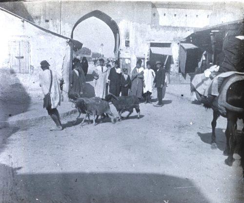 Porte d'un marché aux bestiaux - Photo Maroc 1915-1918 © Joseph Miquel