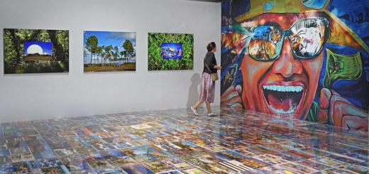 """""""Michel Houellebecq. Rester vivant"""" Exhibition, Palais de Tokyo, Paris, France, June 26, 2016   © Courtesy of Jean-Pierre Dalbéra/Flickr."""