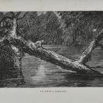 7. Un pont à Kakandy, p. 271.
