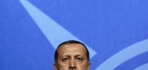 erdoganbleu