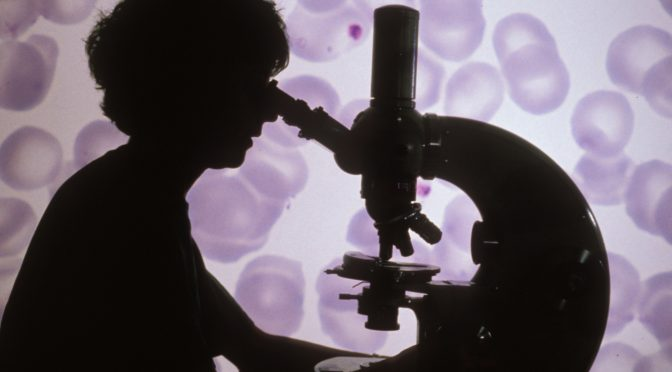Etude au microscope