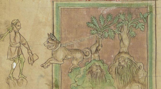 La mandragore :  naissance et persistance d'un mythe
