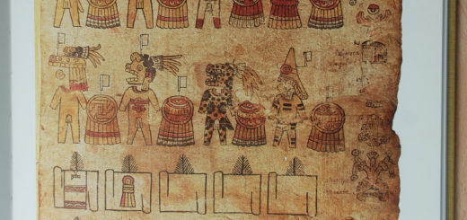 figure : page du Codex Matricula