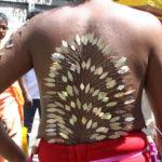 jpg/Thaipoosam-Cavadee---le-dos-d_un-pelerin-s.jpg