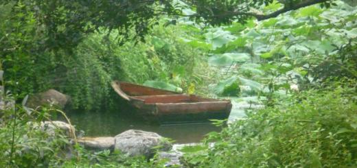 green-park-in-sahoxing