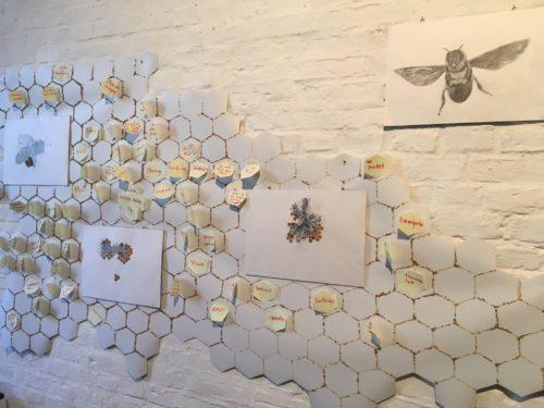 Wandinstallation mit Zeichnungen von Bienen vor einer Collage aus Bienenwaben