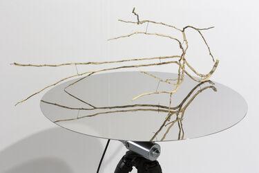 Das Bild zeigt einen Tisch mit bespiegelter Oberfläche, auf dem ein dünner Ast mit mehrerer Verästelungen liegt.