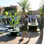 sandrine dole_oasis urbaine_10_7831_web