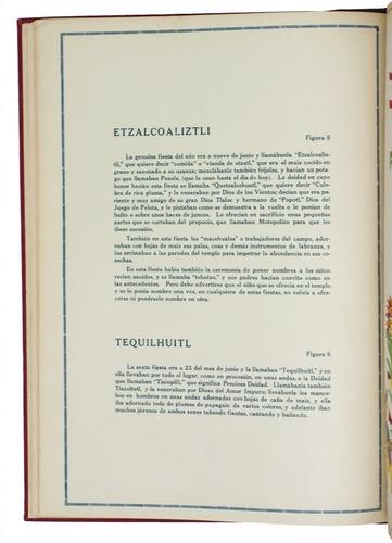 Texte pl. 5-6