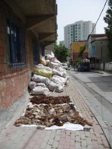 """Permanence de certaines pratiques """"rurales"""" en milieu urbain?"""