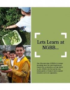 learn at NGBB