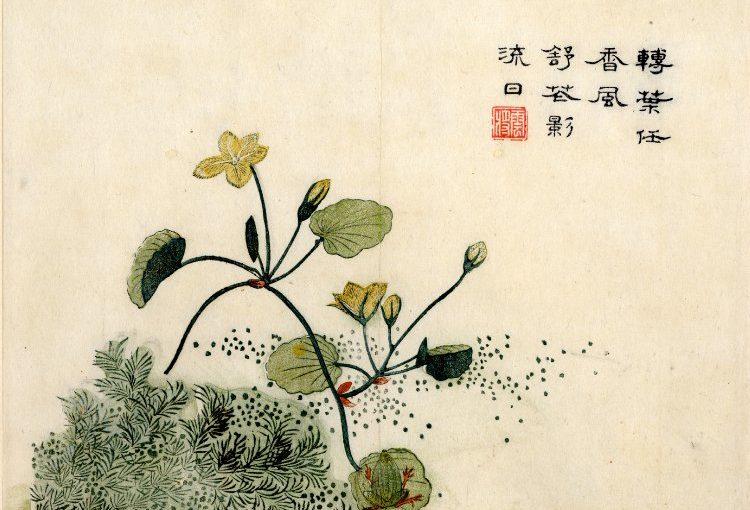 Effets de renforcement de la théâtralité par la traduction : Le Shijing 詩經 (Odes confucéennes) selon Ezra Pound (1885-1972)