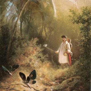 Carl Spitzweg, Der Schmetterlingsfänger