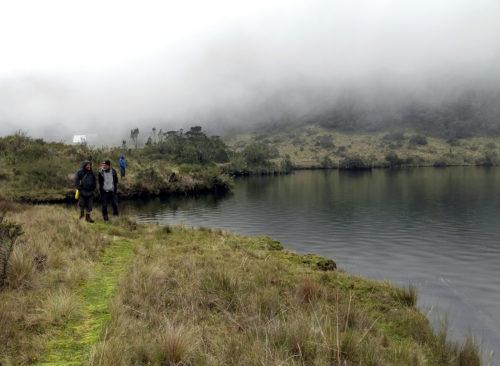 Survey near the lake of Piunde on Mt Wilhelm (Simbu province)
