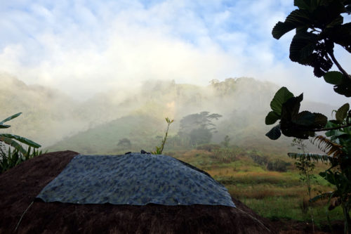 Morning mist above the research team's house in Manim.