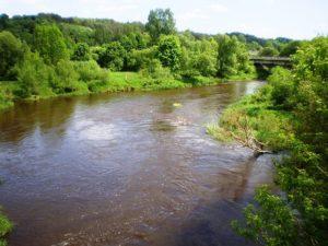 Dubysa River